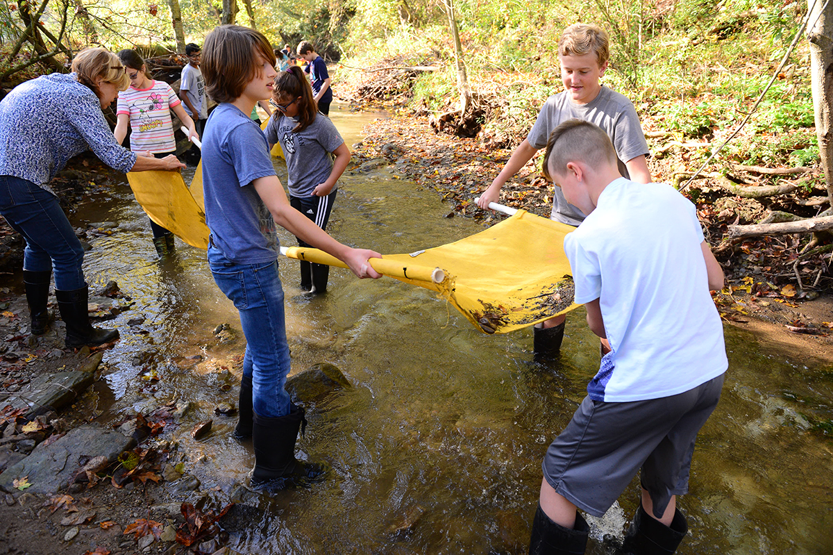 Sixth grade creek water testing