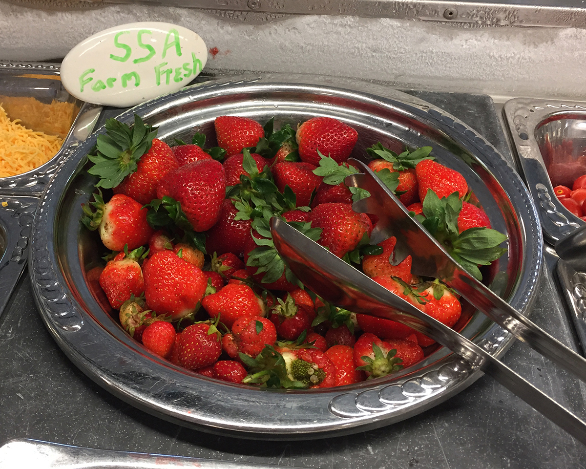 SSA Farm-fresh strawberries on the salad bar